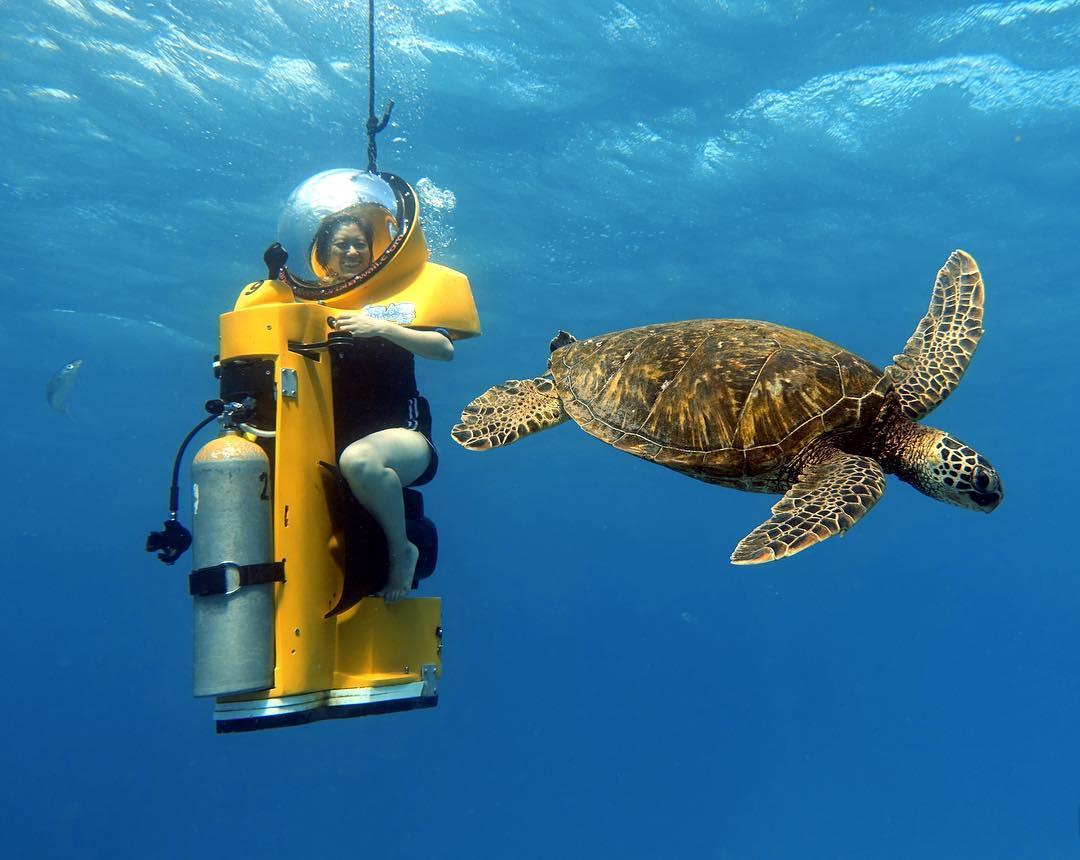 Island Water Sports Hawaii - Sub Scooter with Sea Turtle