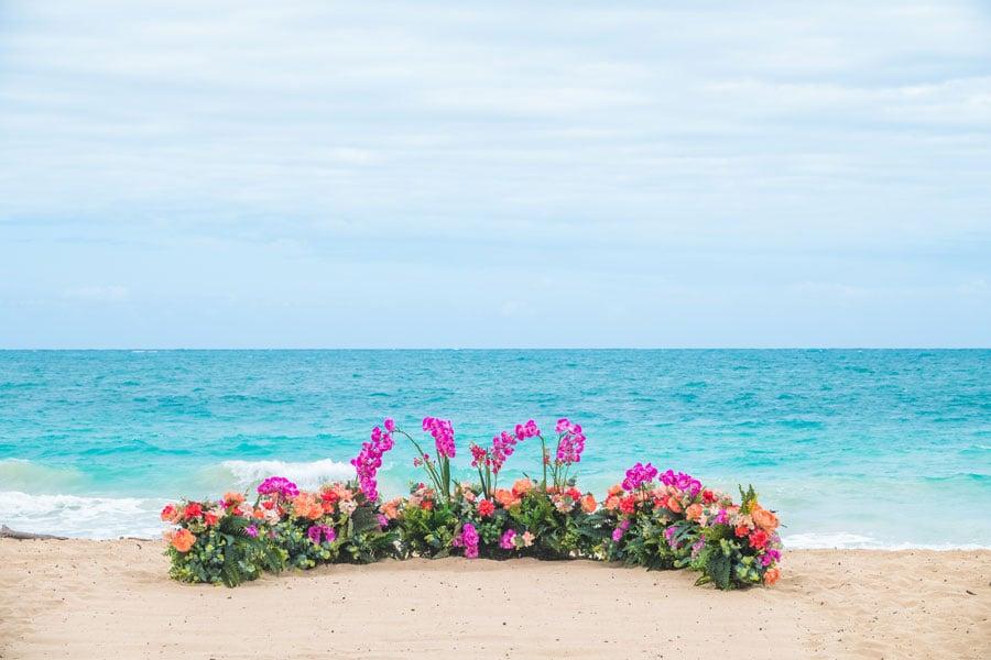 Paradise-Blossoms-Circle1