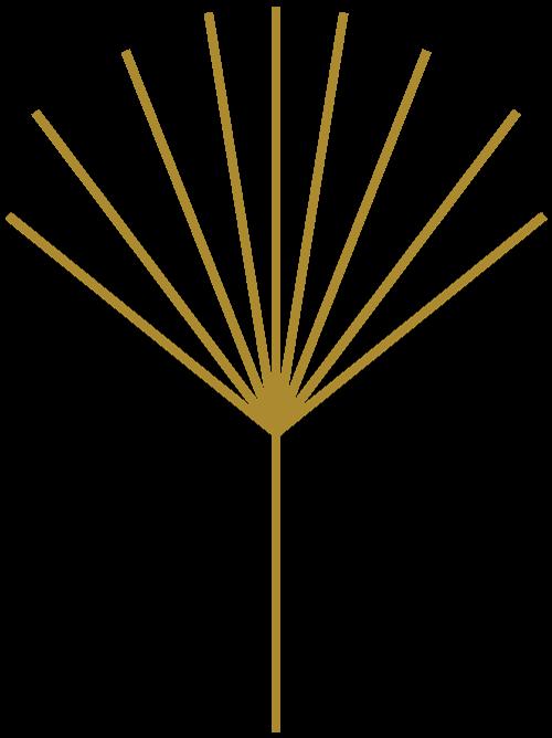 Hawaii wedding logo